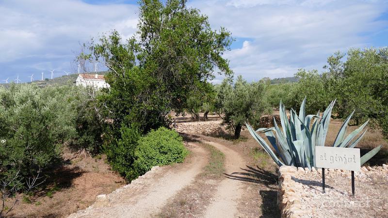 01 Casa Rural Agroturismo Catalunya Costa Dorada entre olivos DESconnect